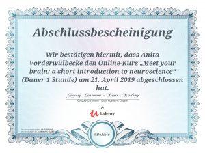 Fortbildung Neuroscience  - Assistenzhundezentrum Sauerland
